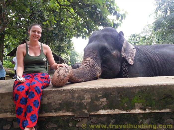 Tamsin with her friend at Millennium Elephant Foundation