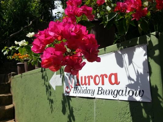 Aurora Bungalows- Ella